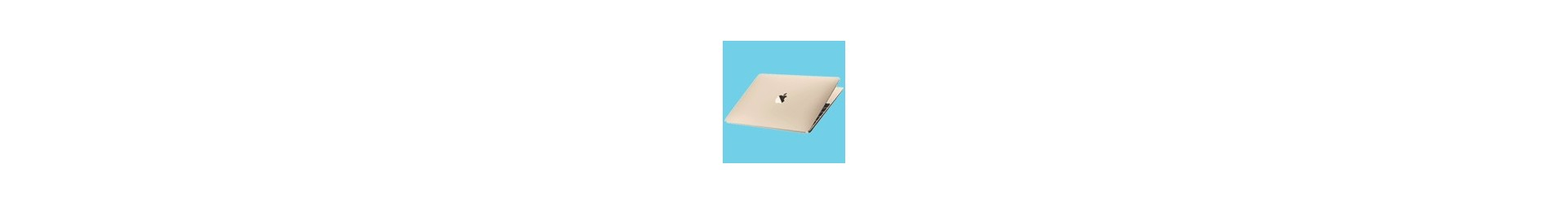 "MacBook 12"" (A1534)"